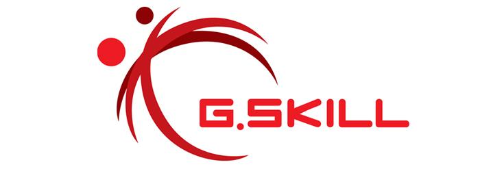 """G.Skill"""""""